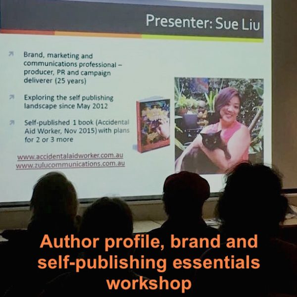 Sue presenting workshop square